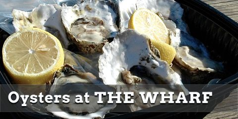 Why You Should Eat More Oysters and Where to Find Them at Wharf DC